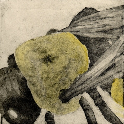 Amber Chiozza - Bee