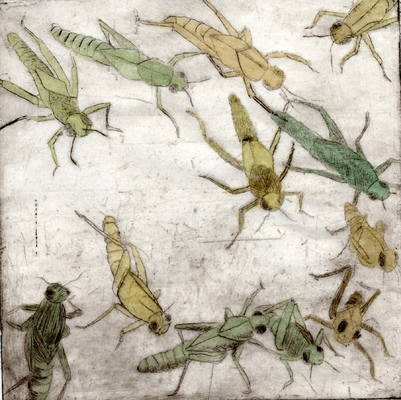 Amber Chiozza - Locusts