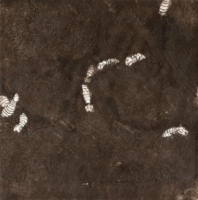 Amber Chiozza - Termite