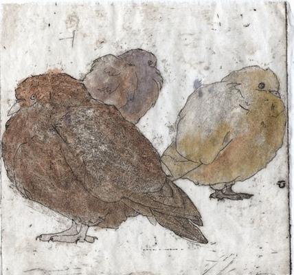 Amber Chiozza - Pigeon