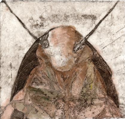 Amber Chiozza - Cockroach
