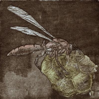 Amber Chiozza - Wasp