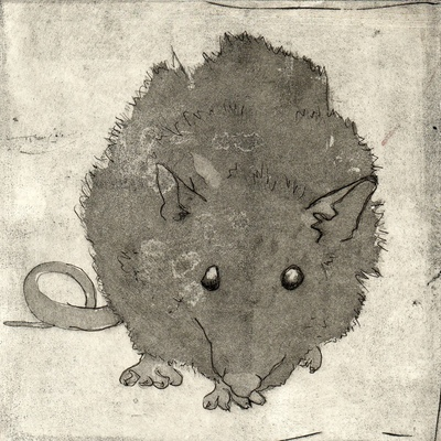 Amber Chiozza - Rat