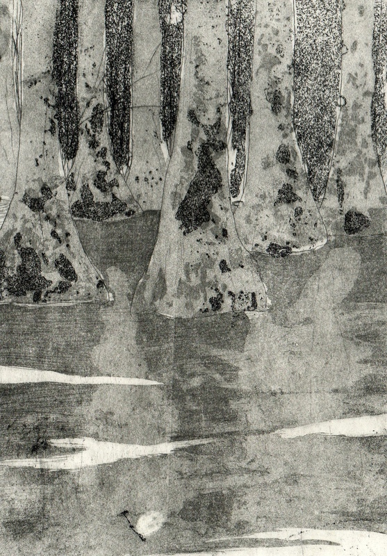 Amber Chiozza - Florida Swamp