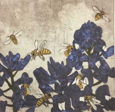 Amber Chiozza - Bluebells and Honey Bees. Etching. 2016.