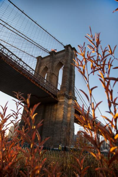 SUI (JEN)ERIS PHOTOGRAPHY - Brooklyn Bridge - Brooklyn, New York