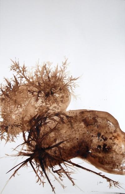 Juliette Choné - Germaine, 2010, brou de noix sur papier, 65x100 cm
