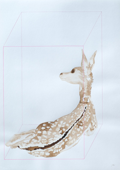 Juliette Choné - In the box: Bambi, 2016, walnut stain, Posca on paper
