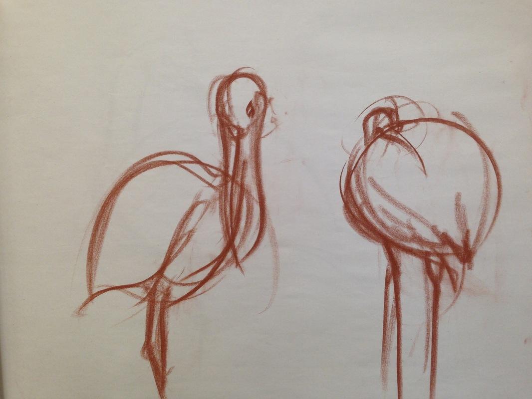 The Works of Brian Vincent Rhodes - Birds. Conte Crayon. 2015