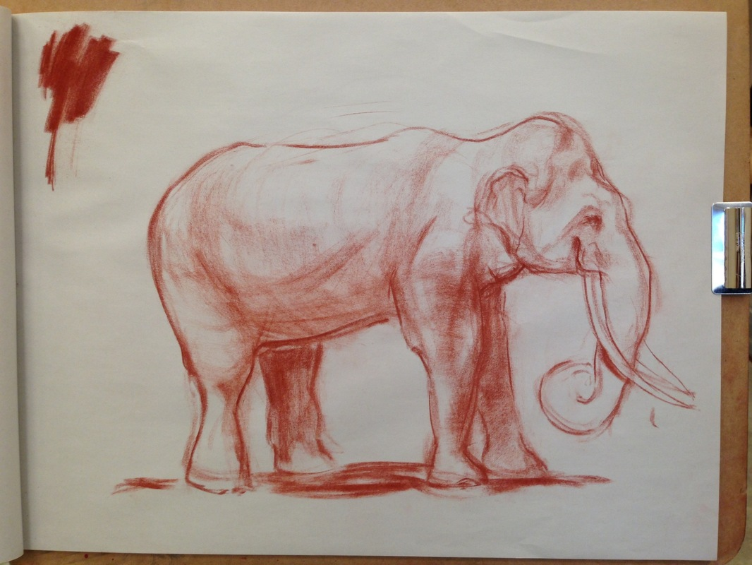 The Works of Brian Vincent Rhodes - Elephant. Conte Crayon. 2015