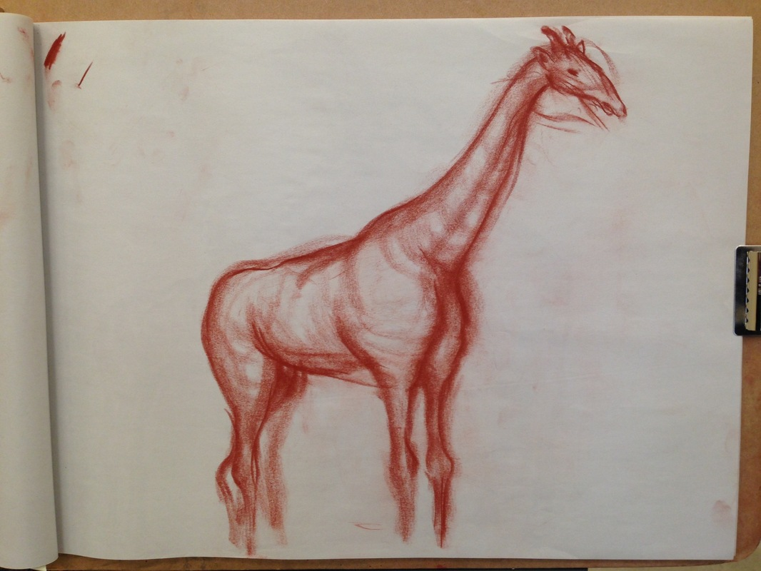 The Works of Brian Vincent Rhodes - Giraffe. Conte Crayon. 2015