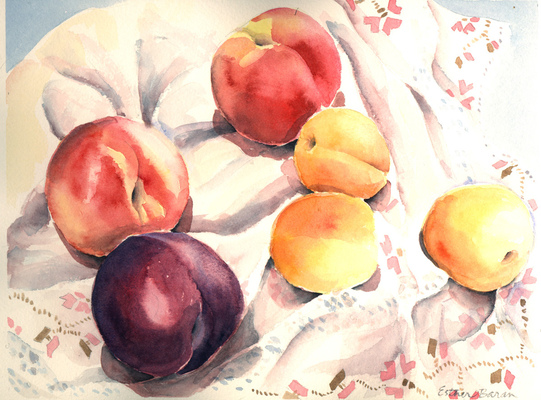 Esther Baran Artwork - Purple Plum and Apricots - $350
