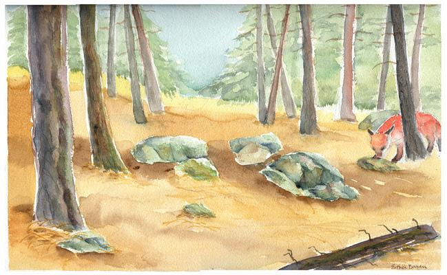 Esther Baran Artwork - Forest Glade Fox - $450