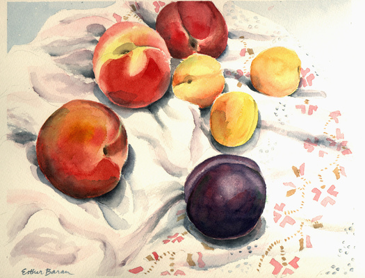 Esther Baran Artwork - Peaches and Plum - $370