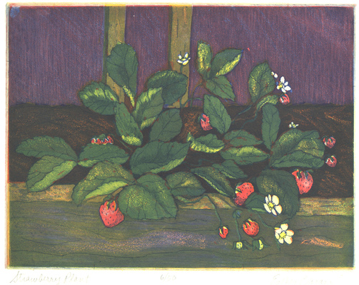 Esther Baran Artwork - Strawberry Plant - $280
