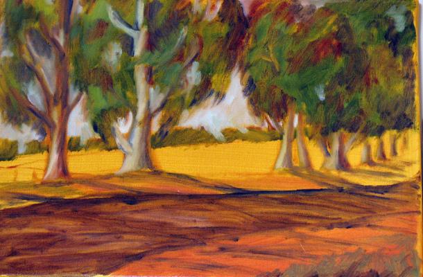 Esther Baran Artwork - Sonoma Trees
