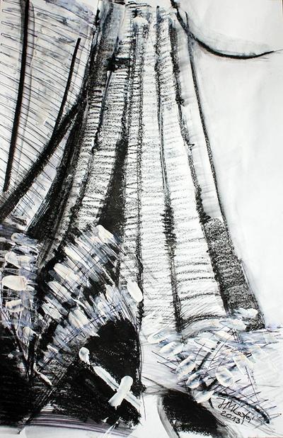 izabelalatos - Black & White Rainforest 12 Australia 42 x 28 cm