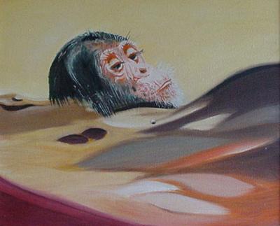 izabelalatos - Monkey in the desert. 60 x 80 cm oil on canvas