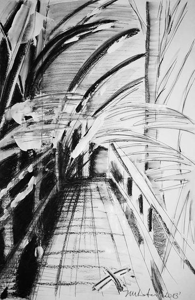 izabelalatos - Black & White Rainforest 11 Australia 42 x 28 cm