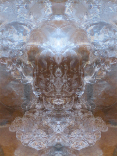 Museum Quality Photographic Art - 2011 Ice Chalice