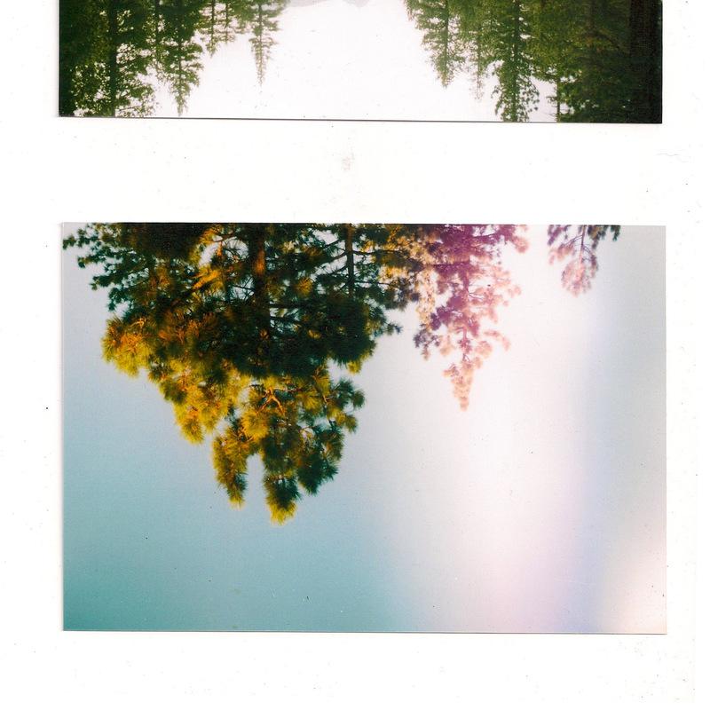 Phoebe Wong Photography -