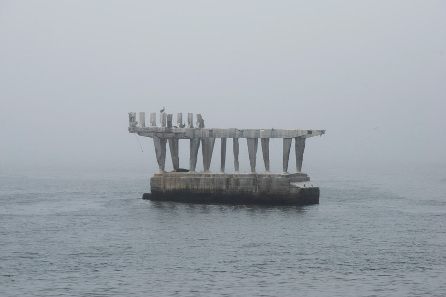 Teresa Arias Photography - Viña del Mar (Chile)