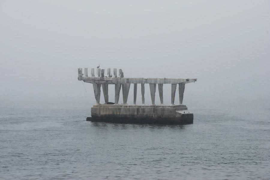 Teresa Arias Photography & Yoga - Viña del Mar (Chile)