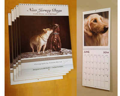 New Jersey Dogs Calendar and Book Project - SPECIAL OFFER UNTIL 1/31/2013! FREE SHIPPING AND A FREE CALENDAR! SIX SIGNED CALENDARS FOR THE PRICE OF FIVE ($19.97 x 5 = $99.85). Deliveries to NJ addresses save 7% instantly because we pay the sales tax!