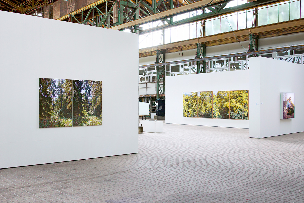 HIRYCZUK / VAN OEVELEN - Mimosa (right) & Pine (left)  |  Shadow-Light-Reflection series, exhibition view, DordtYart, Dordrecht, 2013