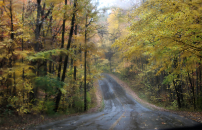 Creative Images by Loyce - Curved road to the nature center