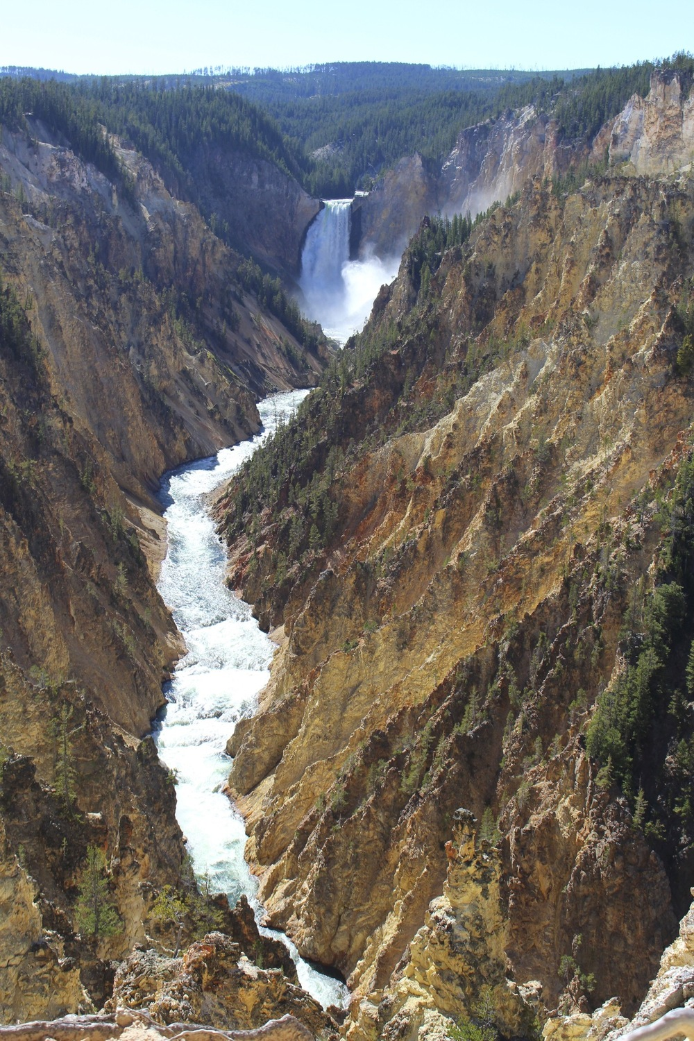 Genevieve French Photography - Grand Canyon of Yellowstone, Wyoming
