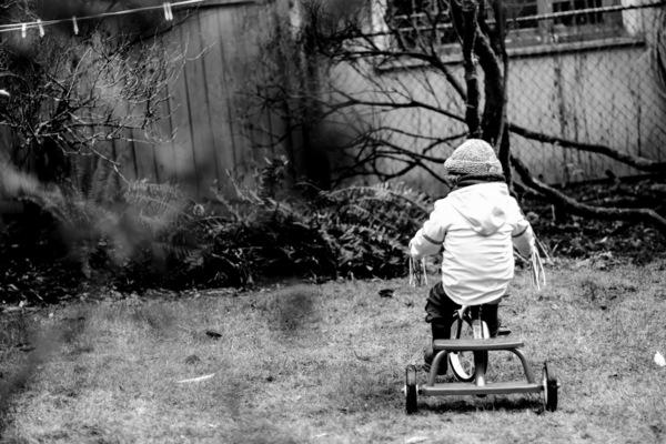 Lea Willingham Photography -