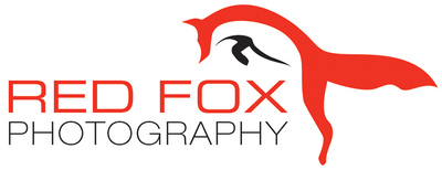 abraun.design - Red Fox Photography logo