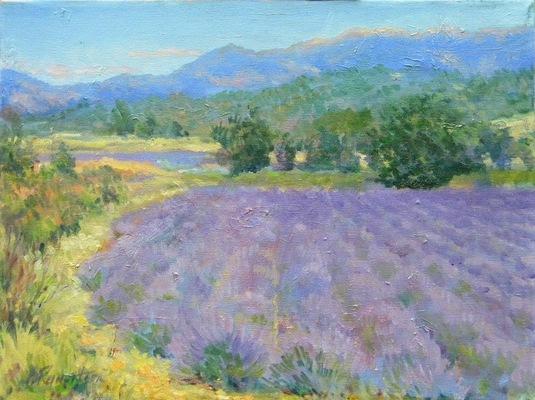 Barbara Reinertson - Provence Lavender 16 x 12