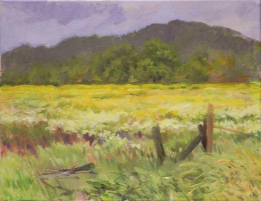 Barbara Reinertson - Spring Wildflowers 20 x 16