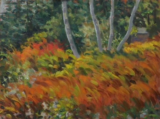Barbara Reinertson - Maine in October 16 x 12