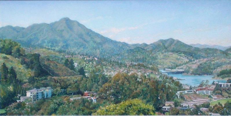 Barbara Reinertson - Mt. Tam from Spencer Avenue 36 X 18