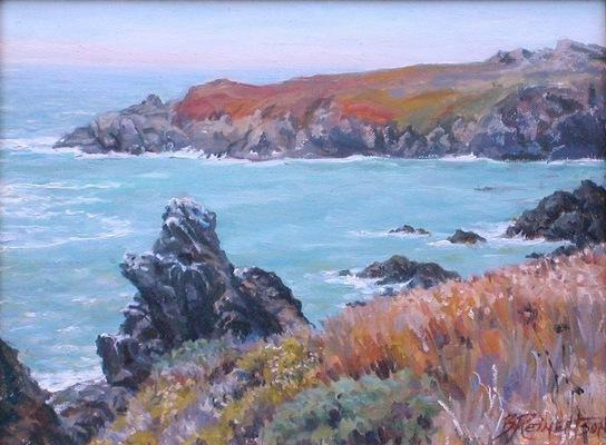 Barbara Reinertson - Above Bodega 14 x 11