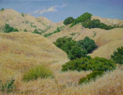 Barbara Reinertson - Rolling Golden Hills 30 x 24