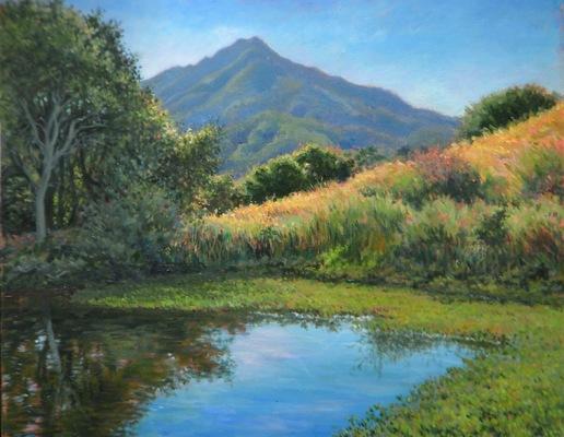 Barbara Reinertson - The View From Davids 30 x 24