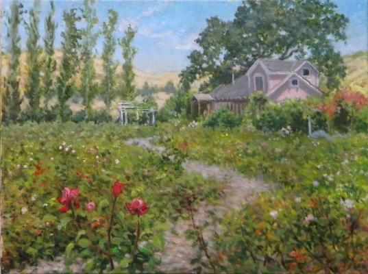 Barbara Reinertson - Petaluma Rose Farm 24 x 18