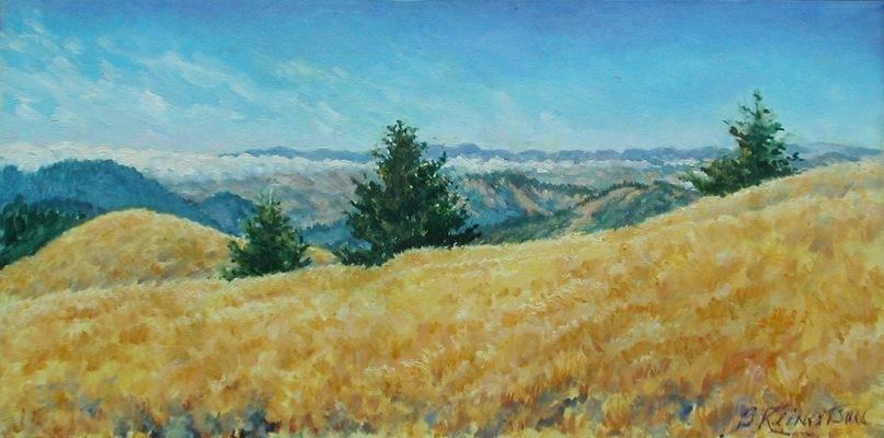 Barbara Reinertson - Late Light On Bolinas Ridge 24 x 12