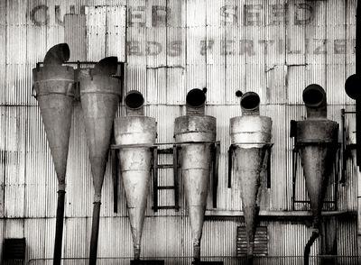 Nieslony Photography - Alien Family