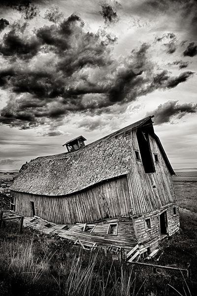 Nieslony Photography - Broken Back Farm