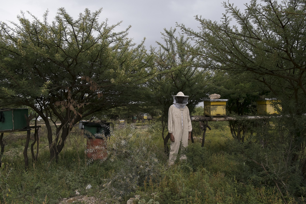 Adrienne Surprenant - Somaliland, 2016