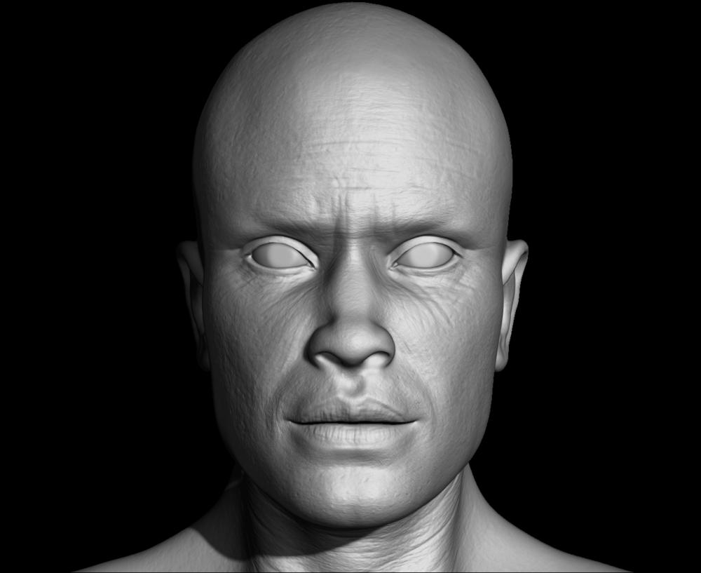 Joels Portfolio - Male Bust