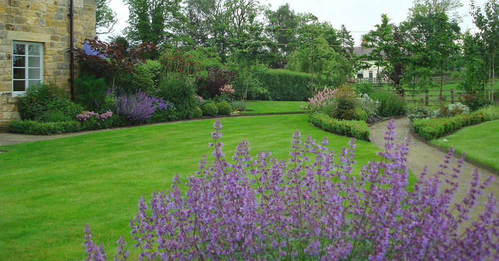 plants by design - Garden near Harrogate one year after implementation in 2009.
