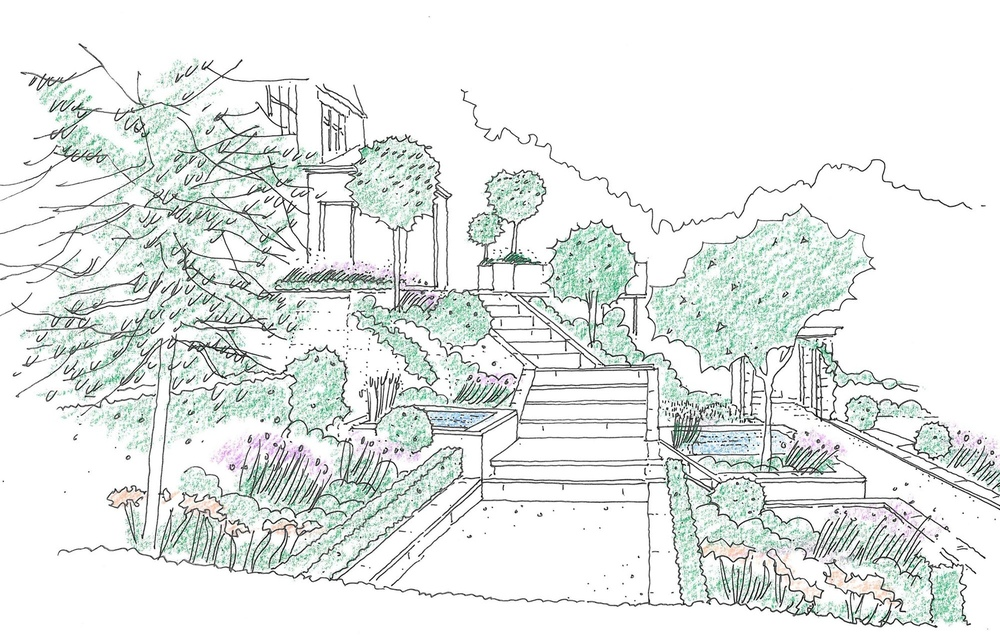 plants by design - design sketch of steps and green wall
