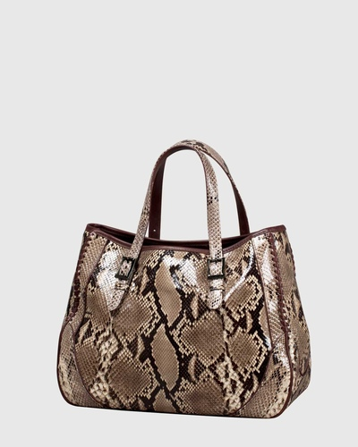 PALADINE - leather goods - Beige Python / Brown calfskin
