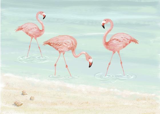 Tina Beans - Flamingos